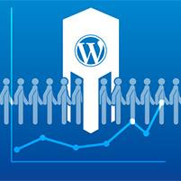 Wie WordPress eine Besucherstatistik bekommt