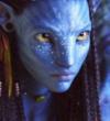 Kinohit 'Avatar - Aufbruch nach Pandora