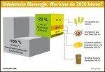 Biomassenpotenzial