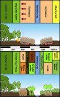 Nachhaltiges Landnutzungskonzept für Südamerika, © TUM
