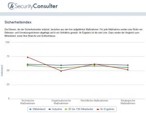 Security Consulter, ©techconsult