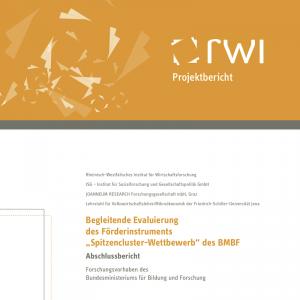 """Begleitende Evaluierung des Förderinstruments """"Spitzencluster-Wettbewerb"""" des BMBF (©RWI 2014)"""