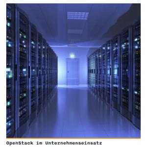 OpenStack im Unternehmenseinsatz, © Crisp Research AG