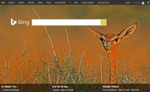 Bing, ©Microsoft