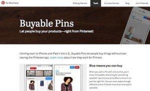 Buyable Pins, © Pinterest