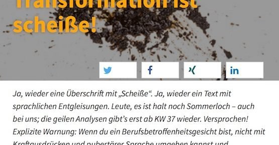 Transformation ist sch***, © Avispador