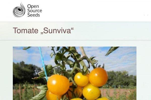 Das erste deutsche Open-Source-Gemüse ist da