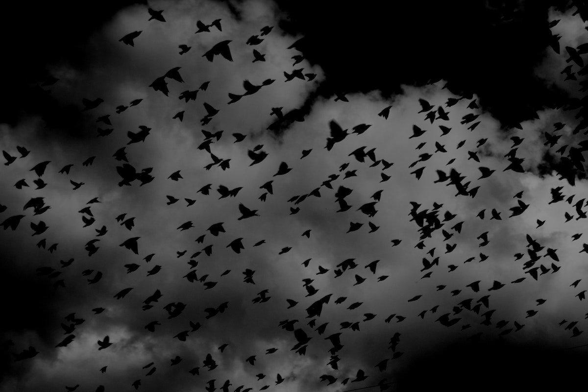 Wann die Cloud-Migration sich im Kreis dreht